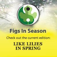 Spring-slider-2019